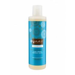 Champú equilibrante cabello graso 250 ml naay botanicals