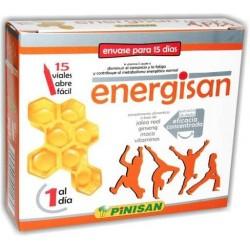 Energisan 15 viales pinisan